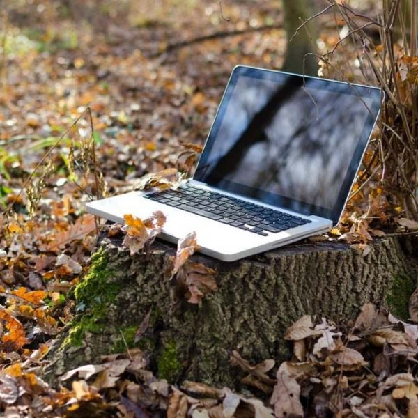 Notebook in nature as remote working symbol