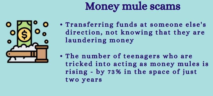money mule scams